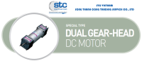 dual-gear-head-dc-motor.png